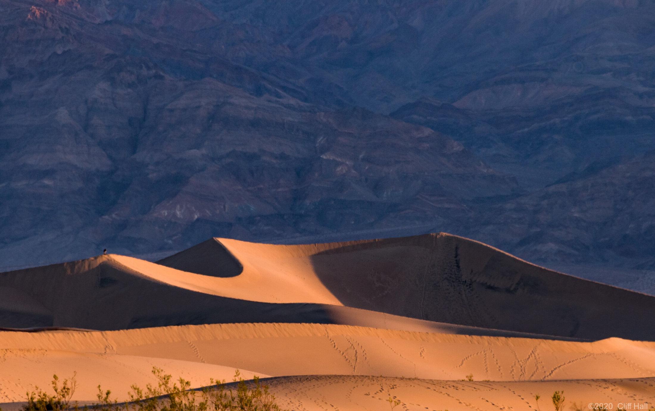 Mesquite Flat Dunes, Death Valley