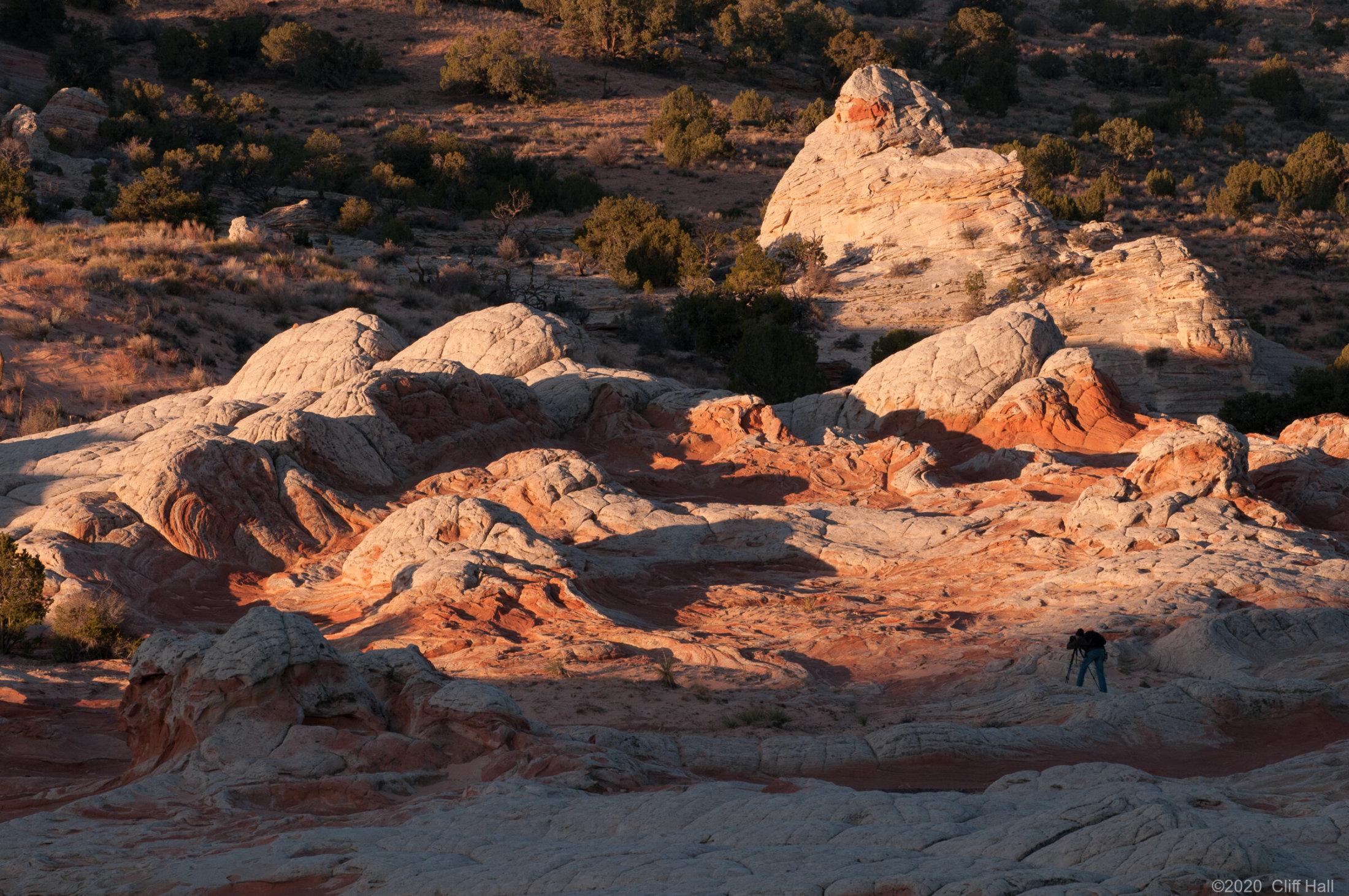 Steve gets the sunrise light at White Pocket, AZ