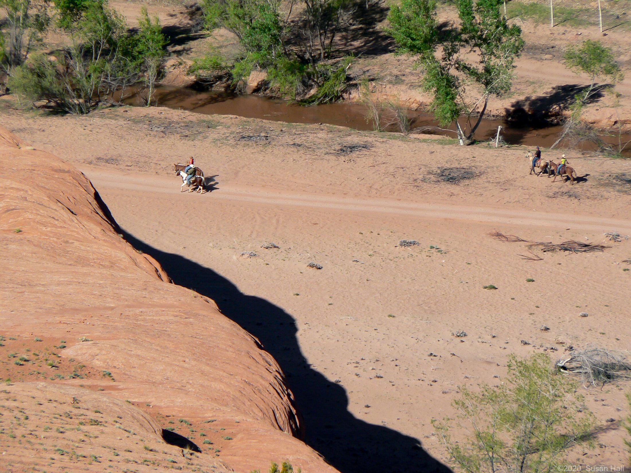Horseback tour of the canyon