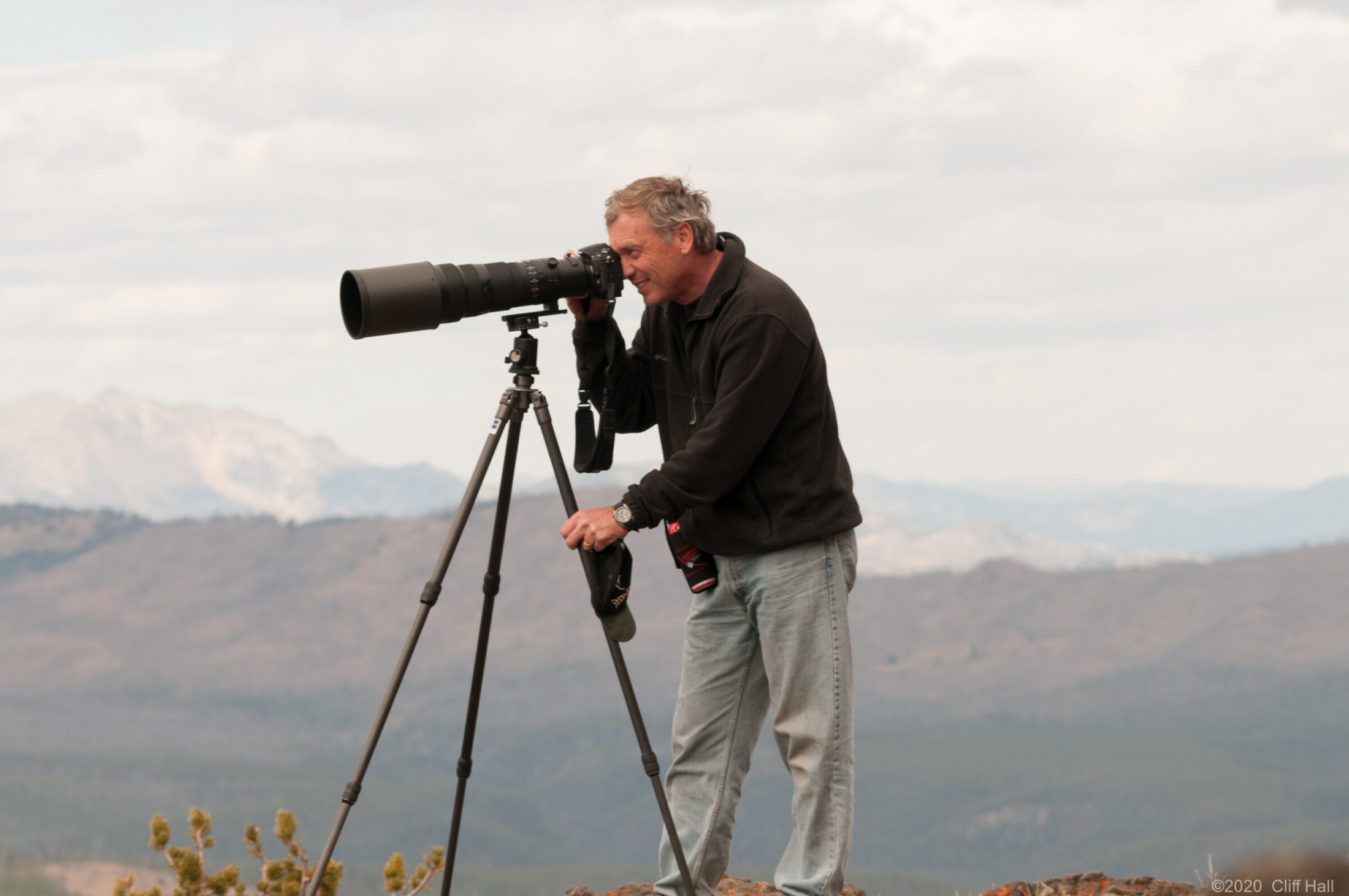 Don looking for wildlife