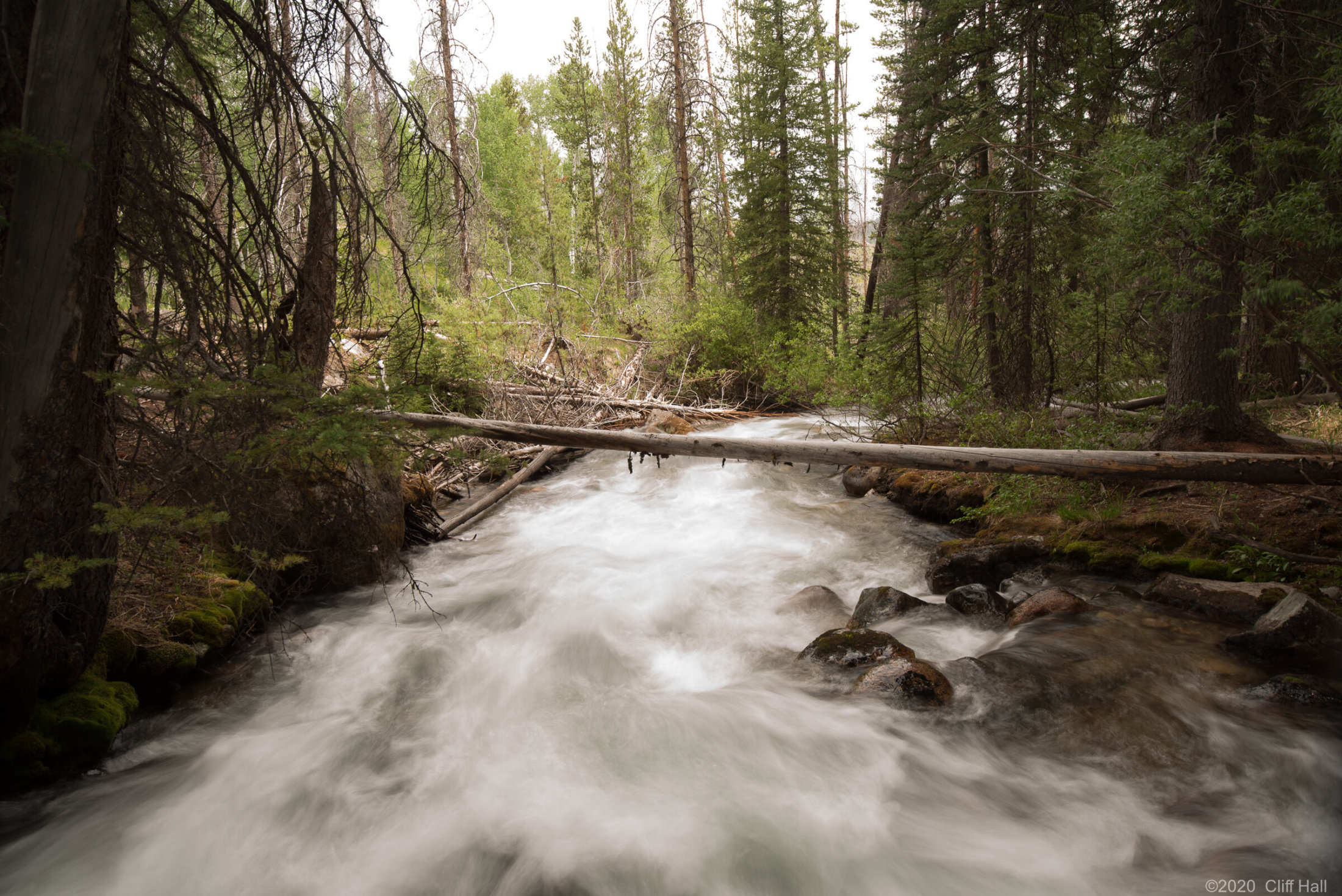 Stream in the Sawtooth Mountains