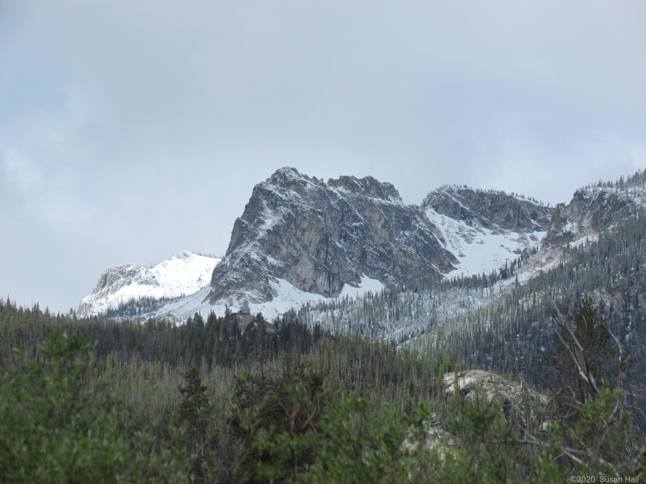 Fresh snow, Sawtooth Mountains