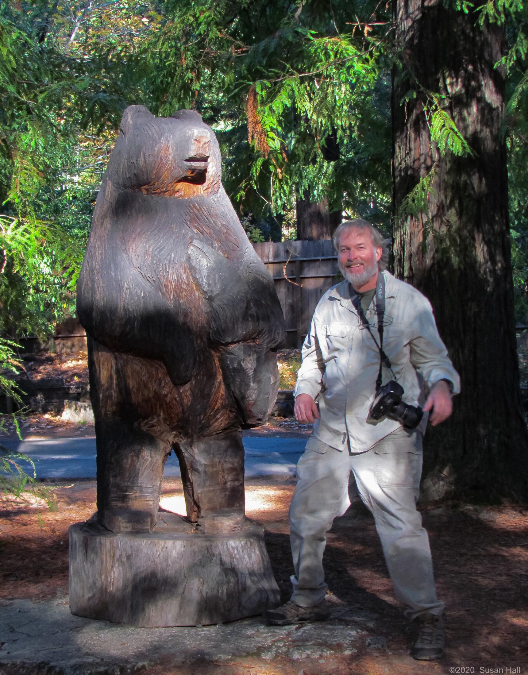 Be a bear