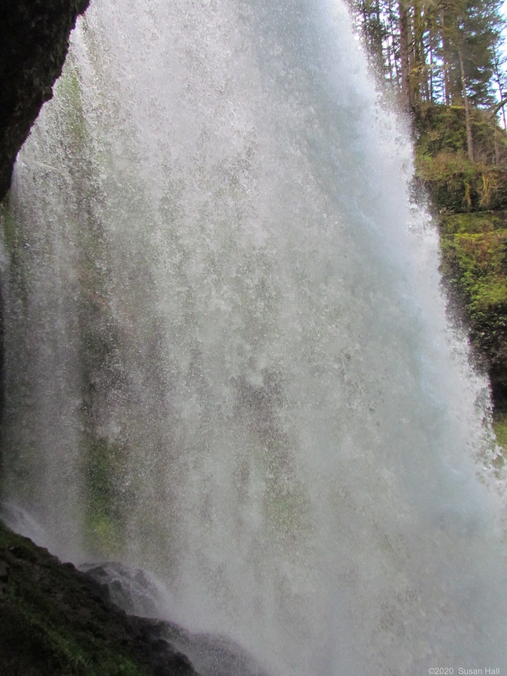 Behind Middle North Falls