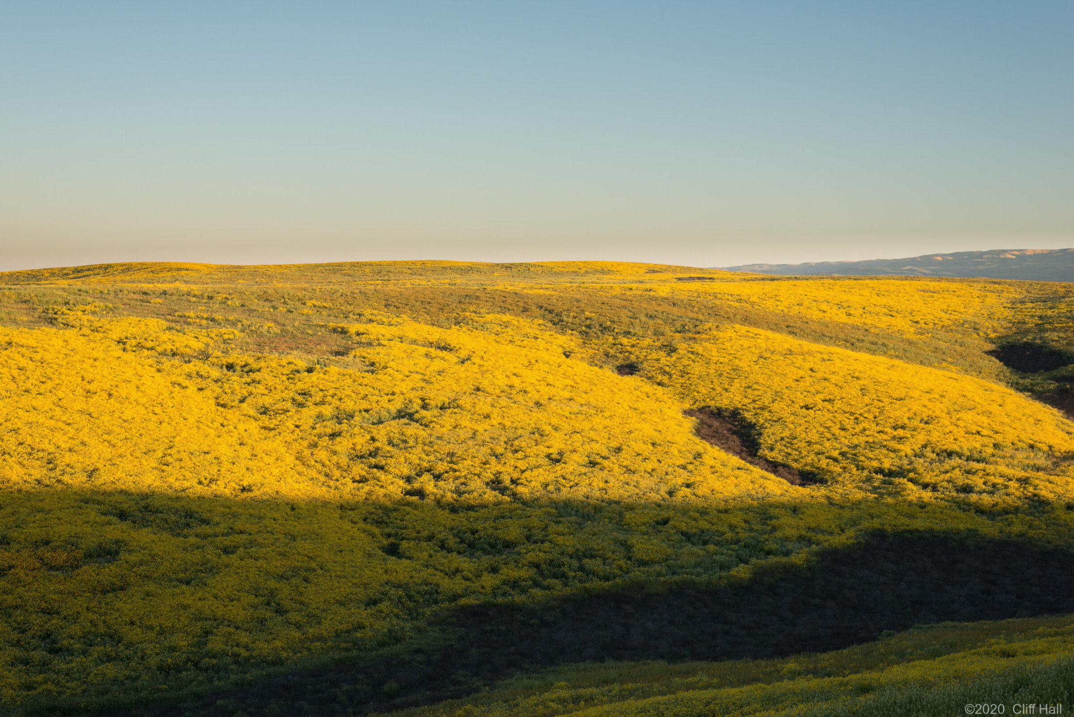 Carrizo Plain Nat Monument