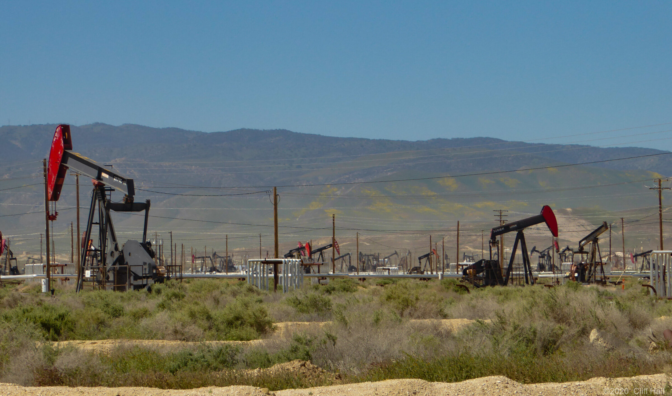 Midway-Sunset Oil Field. Can see wildflowers on the hills
