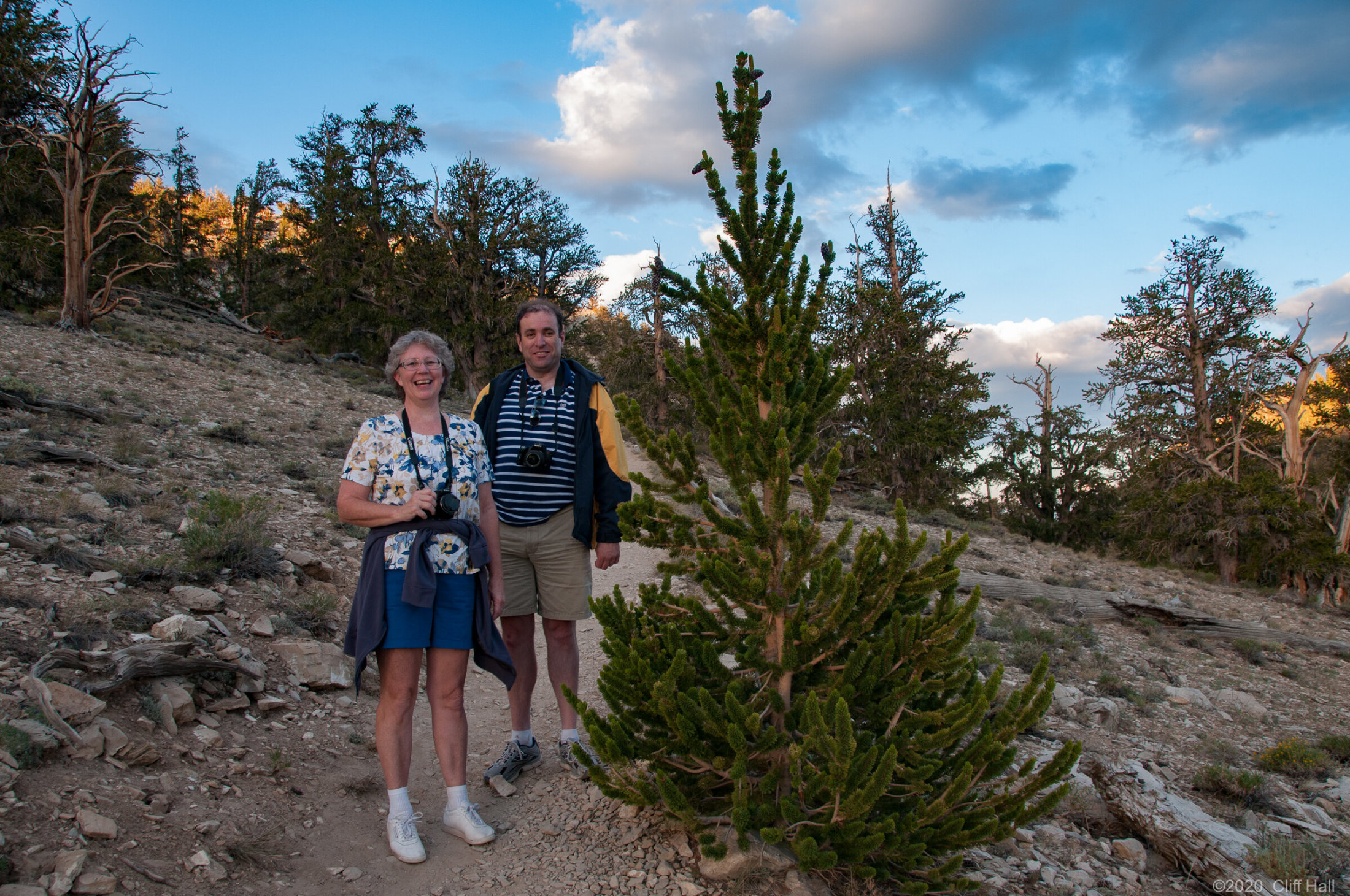 Susan and Garth at Bristlecone Pine Forest
