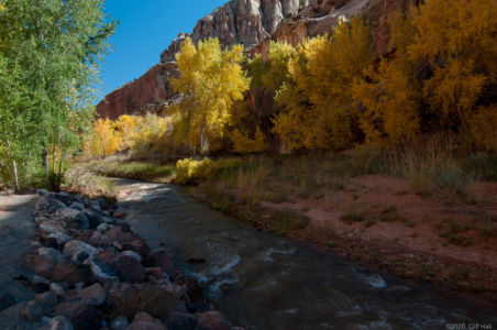Capitol Reef National Park fall colors